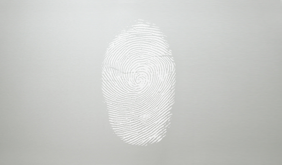 Fingerprint resistant stainless steel